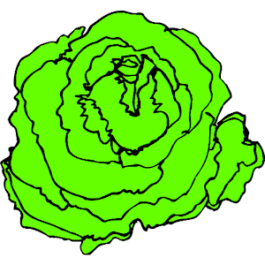 Lettuce Clip Art Tumundografico 3-Lettuce clip art tumundografico 3-12