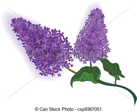 Lilac branch Clip Artby Givaga5/605; lilac - vector illustration of the lilac branch