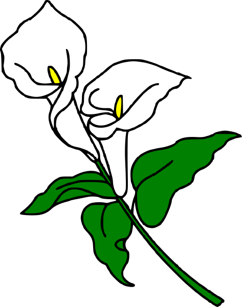 Calla Lily Clipart - Cliparts.co