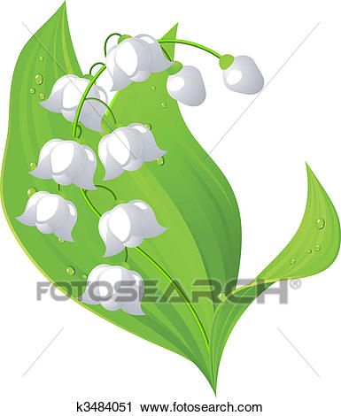 Clipart - Lily of the valley. - Lily Of The Valley Clipart