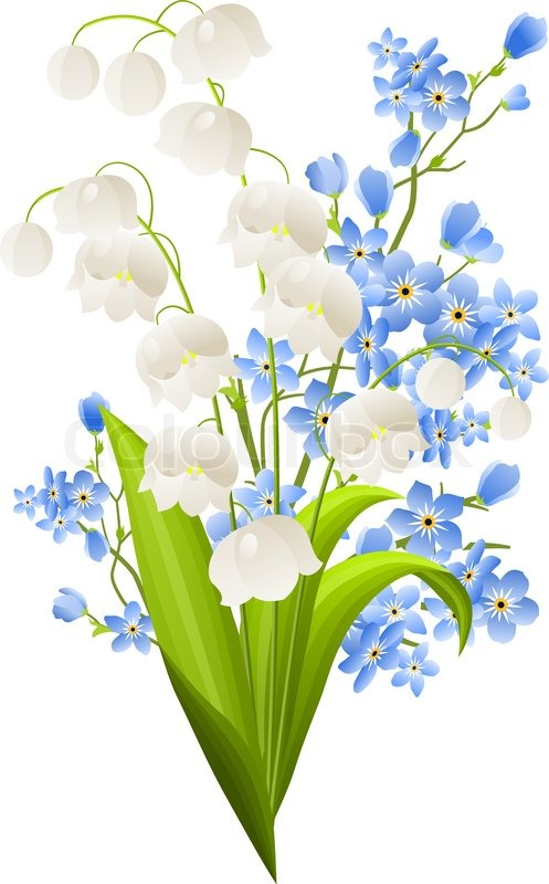 Lilies of the valley and blue flowers isolated on white | Stock Vector |  Colourbox