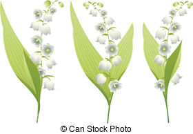 . ClipartLook.com Lily of the Valley - Spring flowers lily of the valley.
