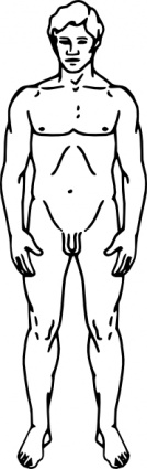 ... Line Drawing Of A Human Male-... Line Drawing Of A Human Male-10