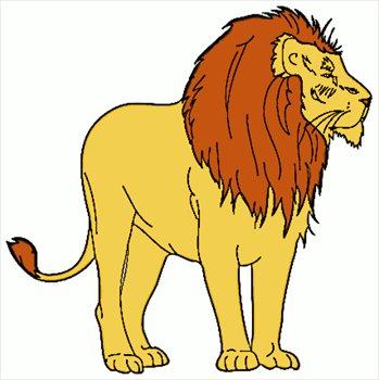 Lion-1-lion-1-7