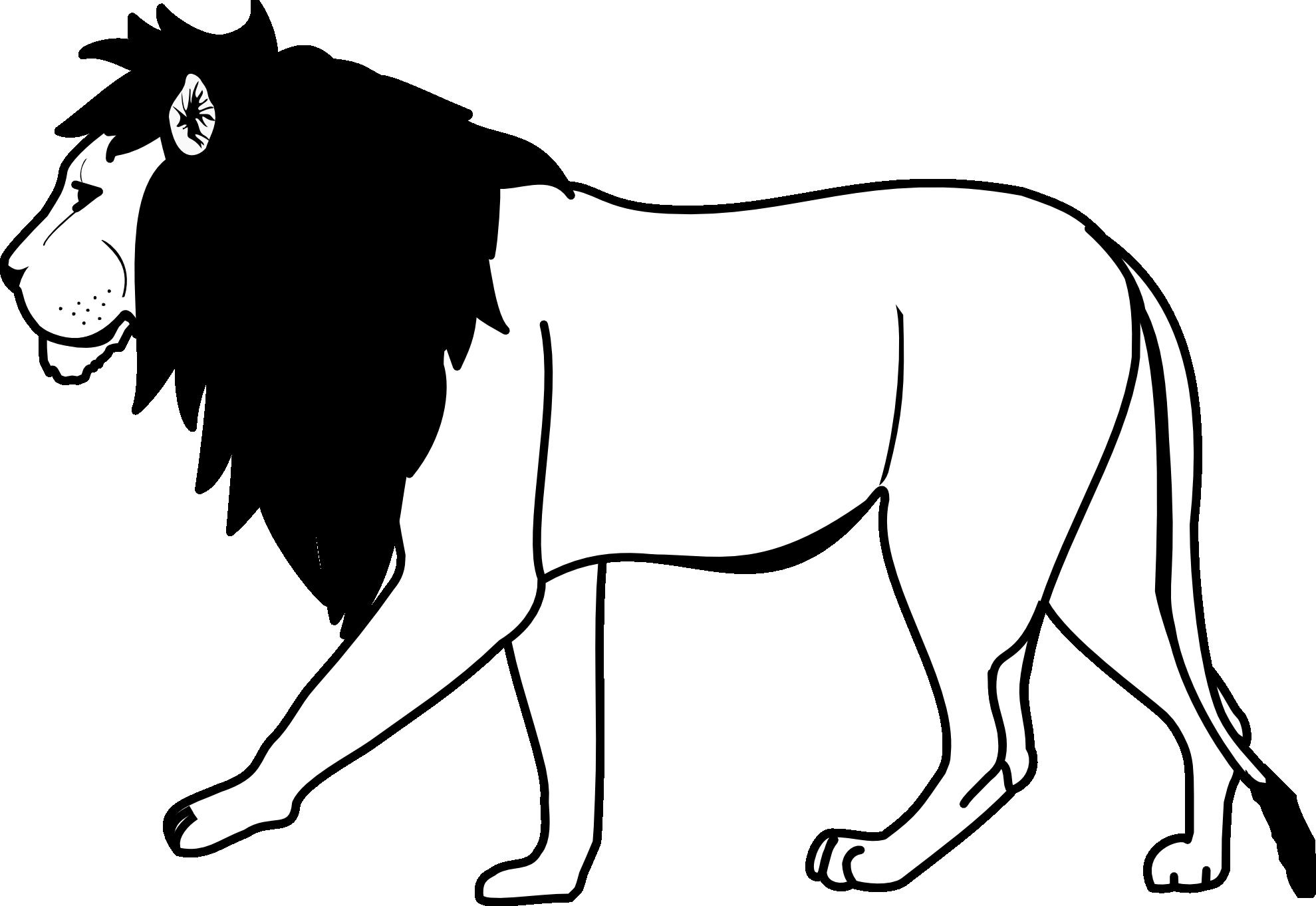Lion Black And White Lion .-Lion black and white lion .-9