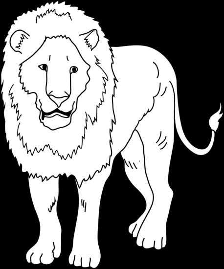 Lion Black And White Lion .-Lion black and white lion .-10