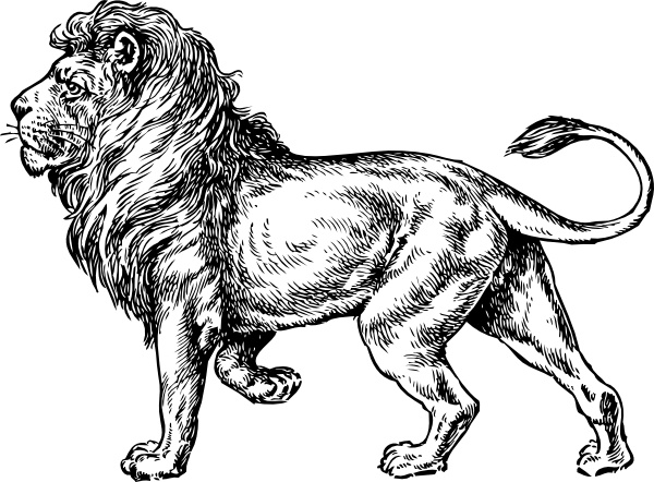 Lion clip art Free vector 445.90KB