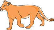 Lion Clipart Size: 38 Kb From - Lioness Clipart