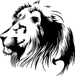 Lion Head Drawing Clipart .