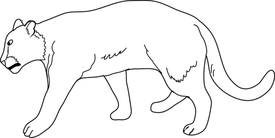 Lioness Coloring Page - Lioness Clipart