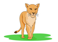 lioness walking alone clipart - Lioness Clipart