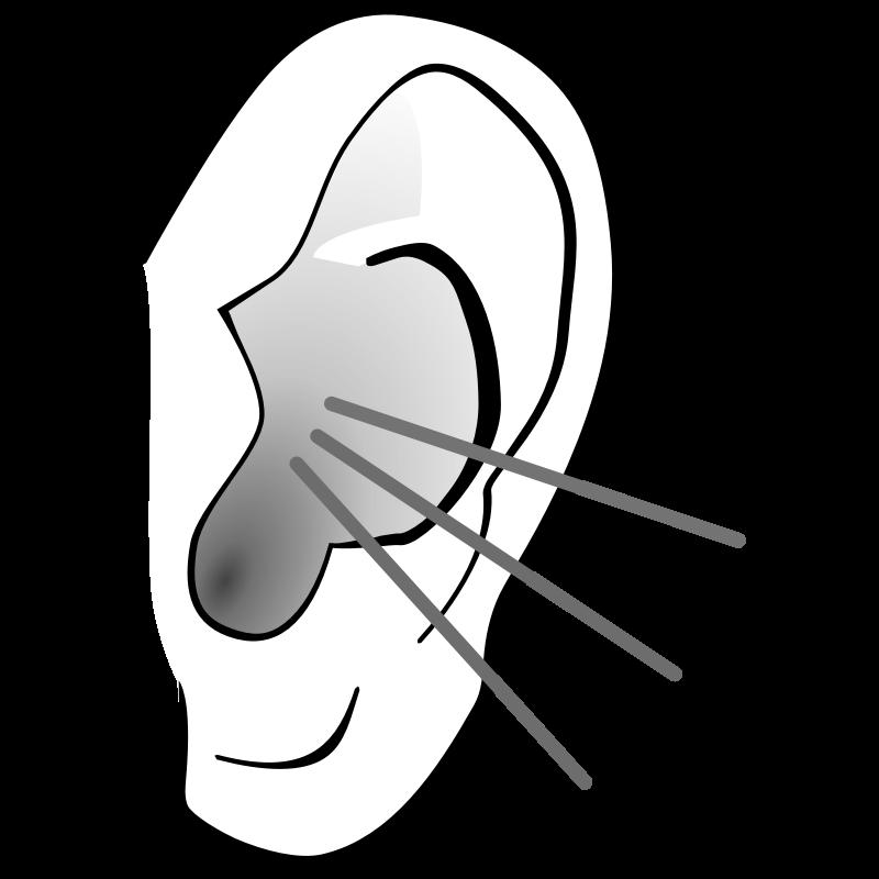 37 Clip Art Ears