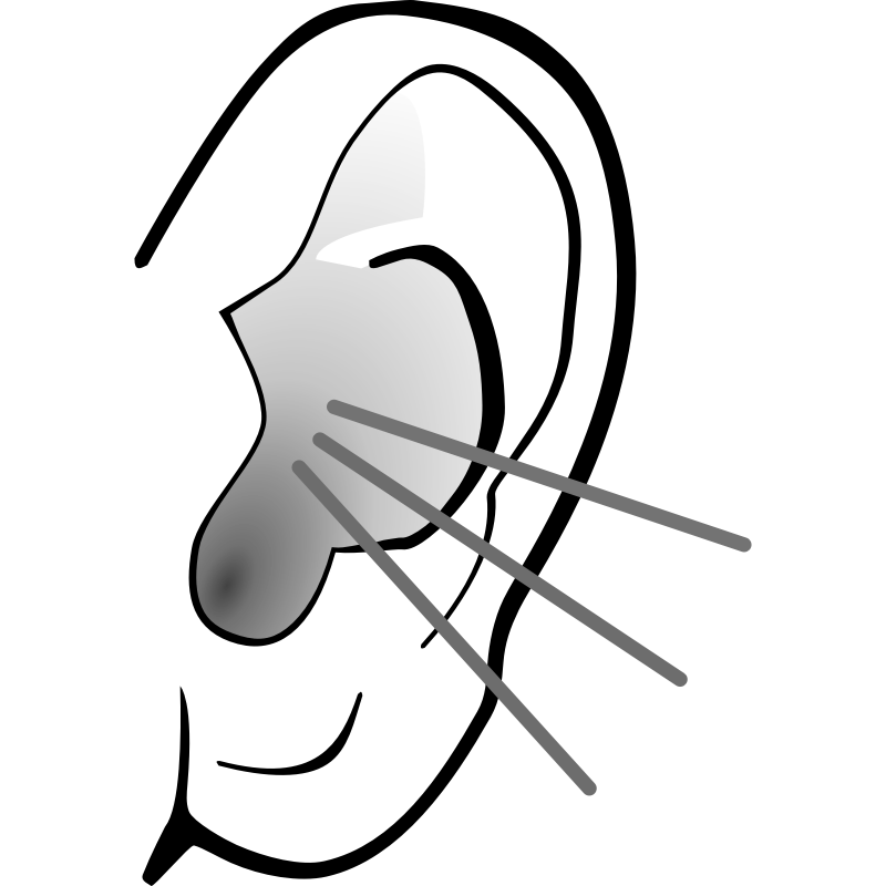Listening Ear Clipart 2-Listening ear clipart 2-17