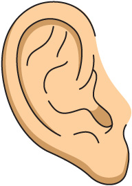 Listening Ear Clipart. Ear