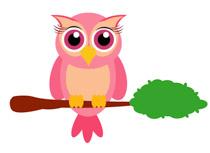 Little Owl Bird Sitting On Branch Animal-Little Owl Bird Sitting On Branch Animal Clipart Size: 61 Kb-16