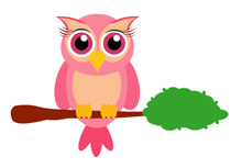 Little Owl Bird Sitting On Branch Animal Clipart Size: 61 Kb