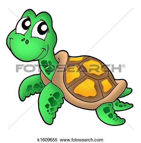 Little Sea Turtle-Little sea turtle-7
