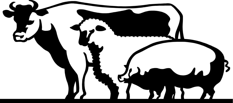 Livestock Clipart