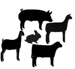 Livestock cliparts