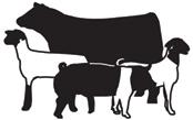 Livestock Show Animal Clipart