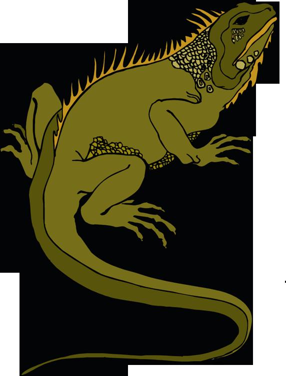Lizard Clipart-Lizard Clipart-9