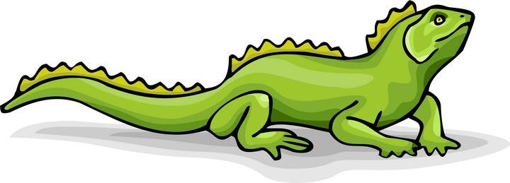Lizard Clipart-Lizard Clipart-11