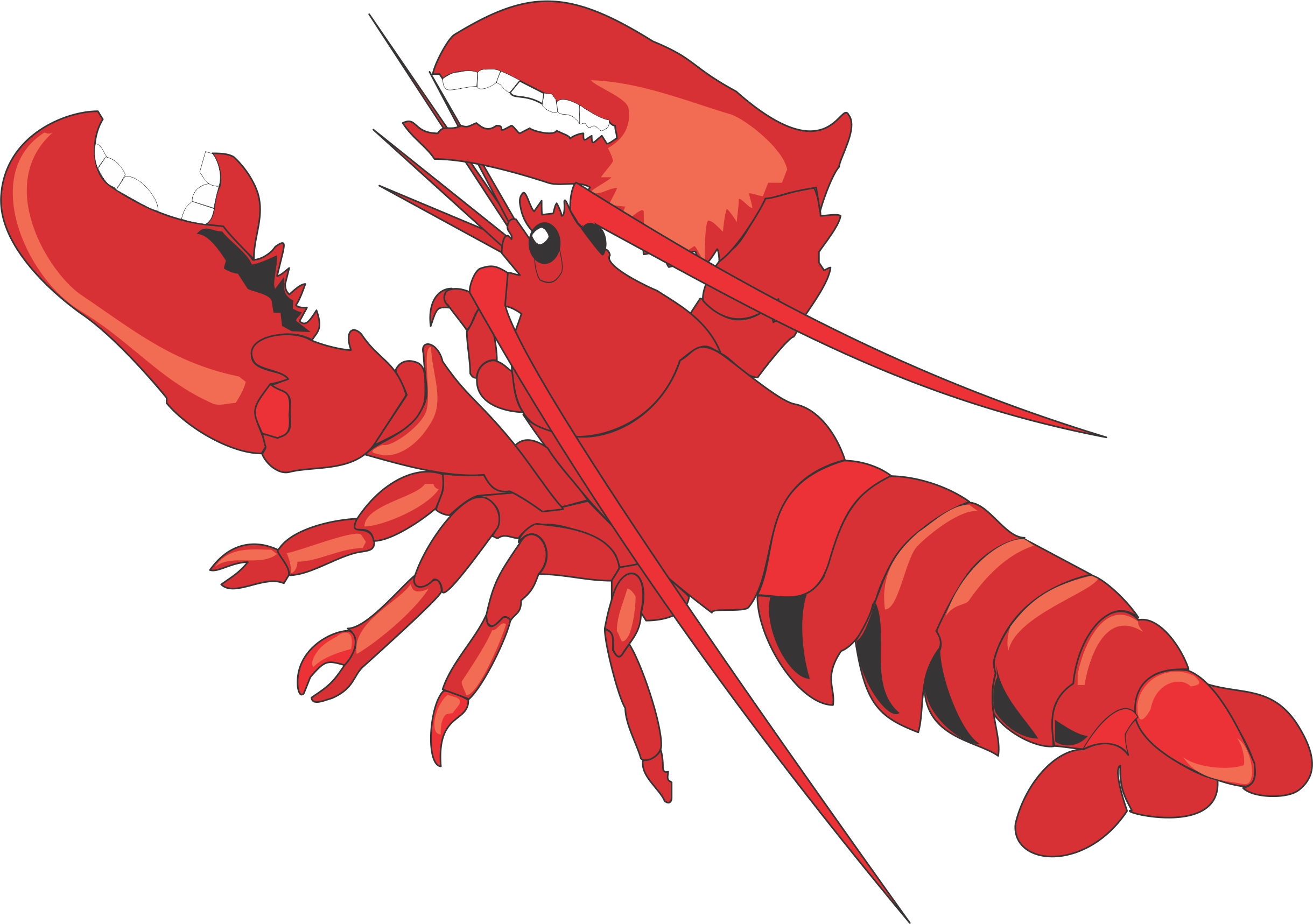 Lobster Clipart Images Free Clipart Images