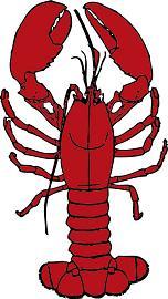 Lobster-Lobster-14
