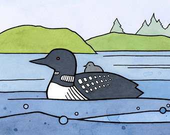 Loon And Baby Illustration 5x7 Bird Art -Loon And Baby Illustration 5x7 Bird Art Print-11