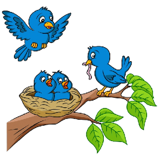 Love Birds Animal Clip Art .