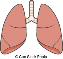 Lungs Clip Art-Lungs Clip Art-3
