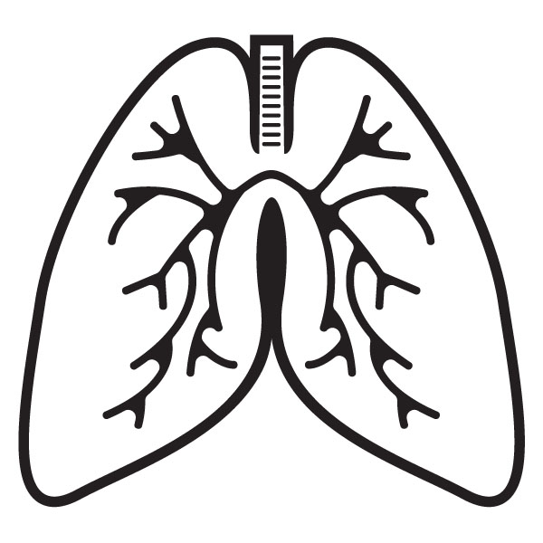 Lungs Clipart-Lungs Clipart-2