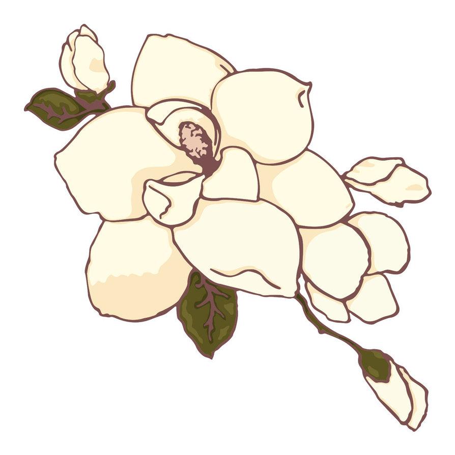 Magnolia Clipart #16555-Magnolia Clipart #16555-3