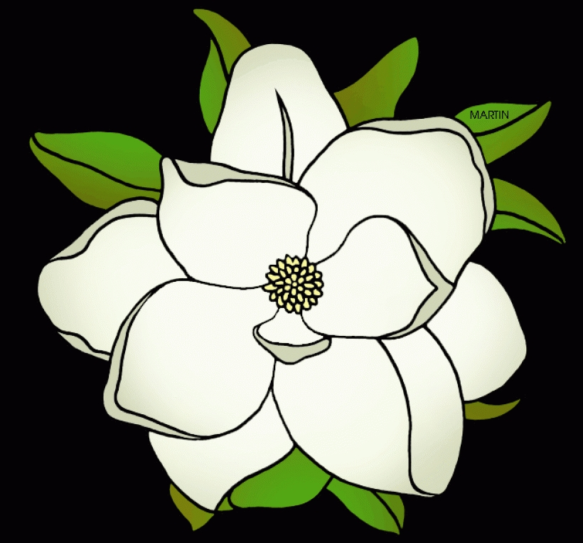 Magnolia Flower Clip Art .-magnolia flower clip art .-13