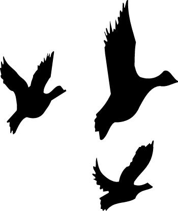 Mallard Clip Art U0026middot; Catcher Cl-Mallard Clip Art u0026middot; catcher clipart-14