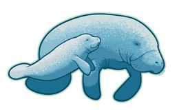 ... Manatee Clipart - Free Clipart Images ...