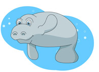 Manatee Under Water Size: 66 Kb From: Marine Life Clipart