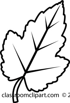 Oak Leaf Clip Art Black And W