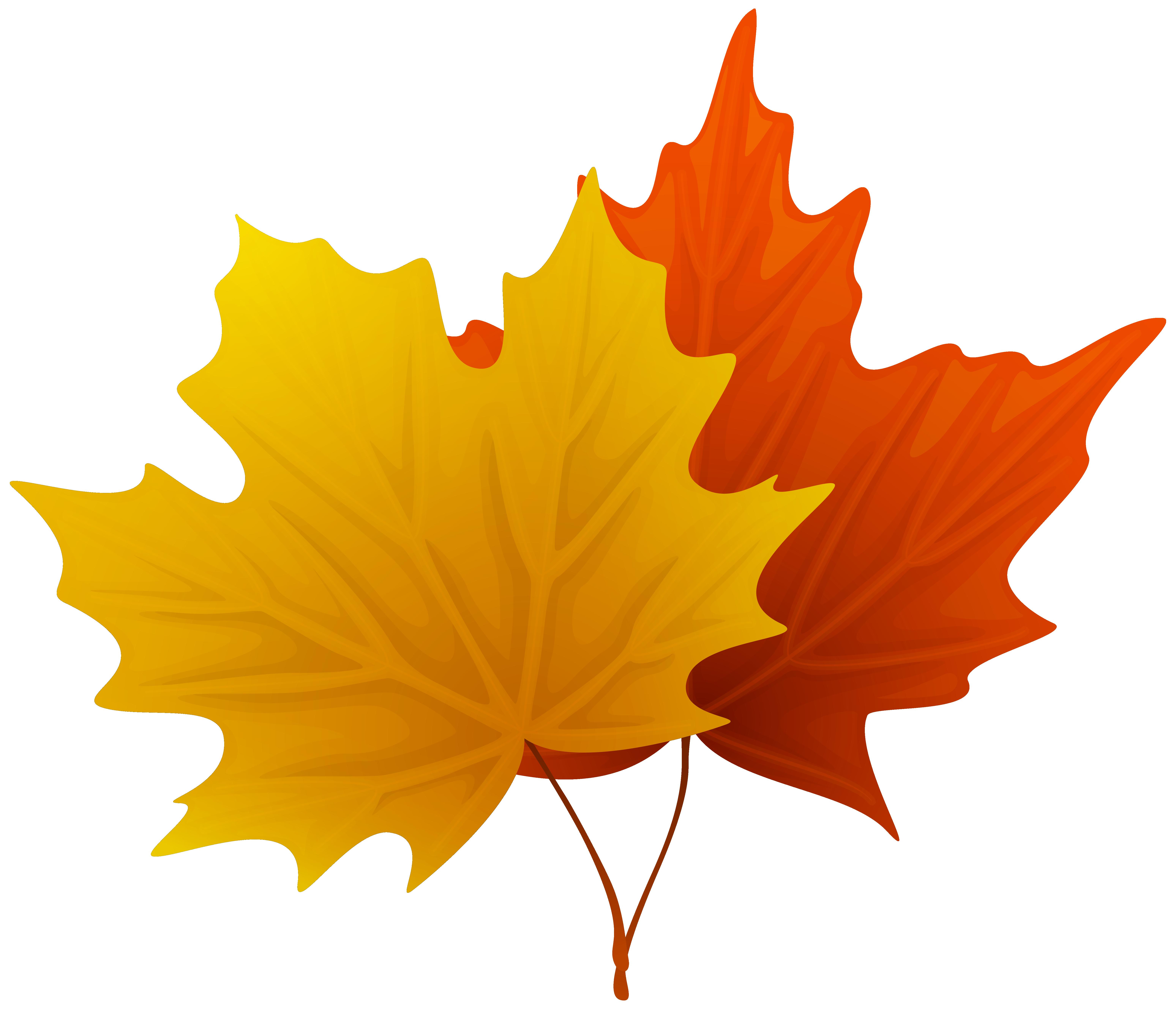 Fall Maple Leaf Clip Art-Fall Maple Leaf Clip Art-6