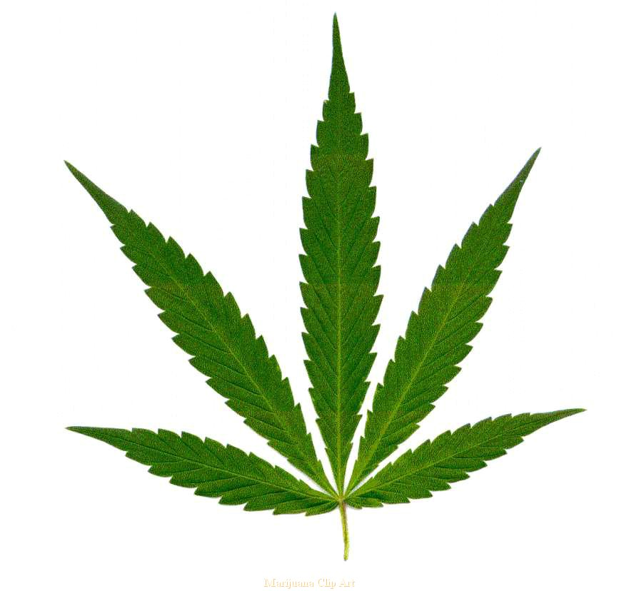 Marijuana Clip Art Car Interior Design