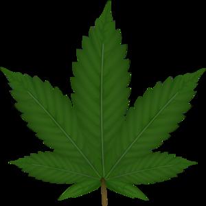 Marijuana Weed Leaf Clipart .