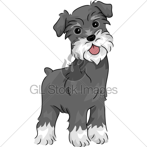 Miniature Schnauzer Puppies Clip Art-Miniature Schnauzer Puppies Clip Art-6