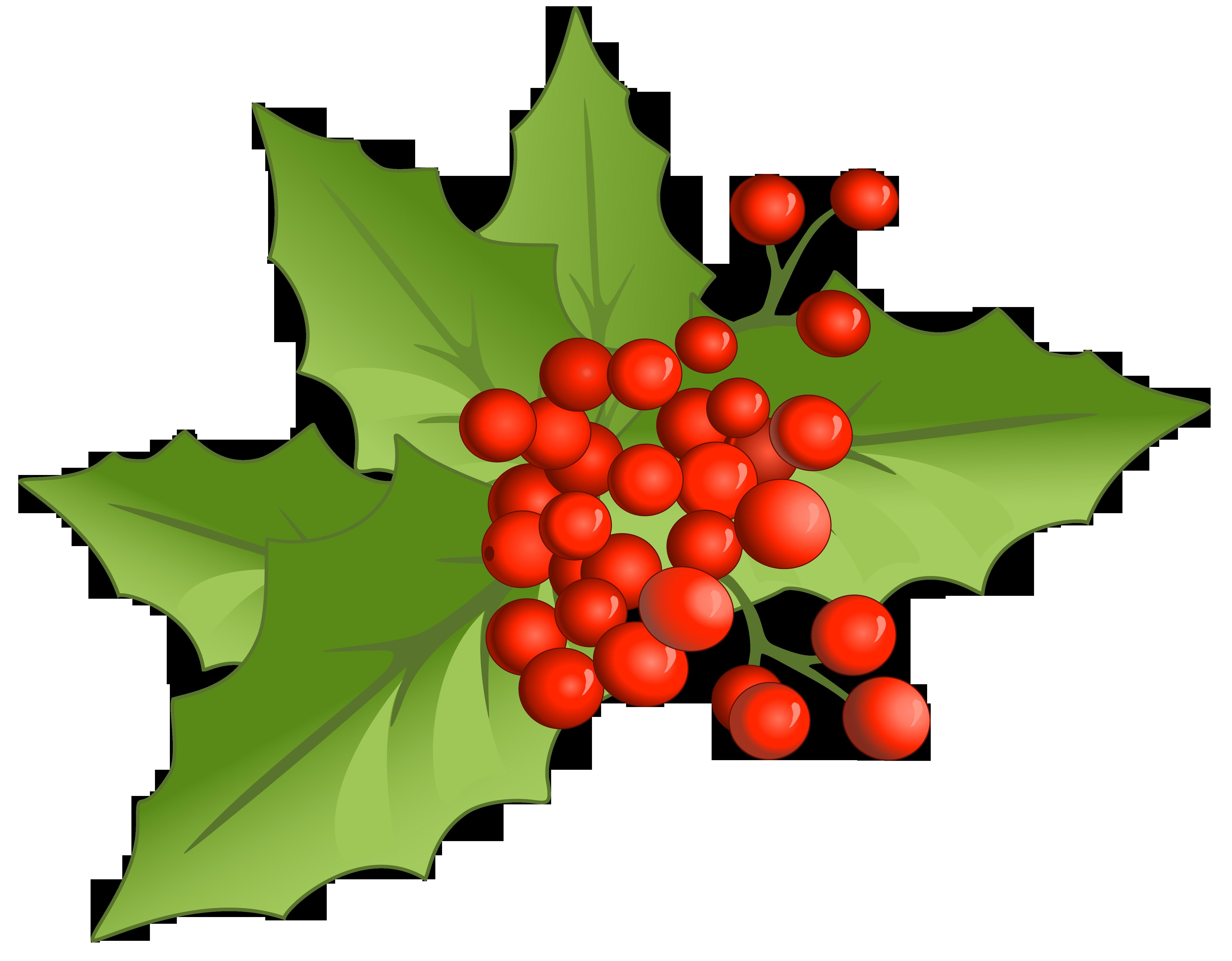Christmas Humor Clip Art.30 Clipart Mistletoe Clipartlook