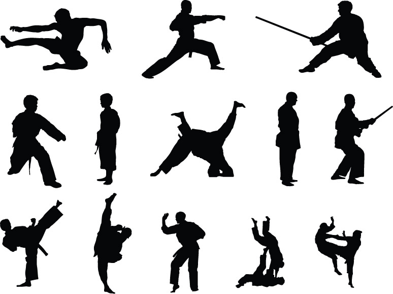 6MG020 - Mixed Martial Arts Pack 1 Wall Decal Sticker