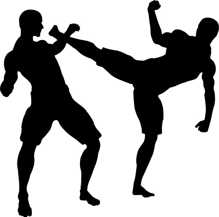 MMA PNG Transparent Image