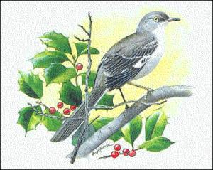 Mockingbird-Mockingbird-11