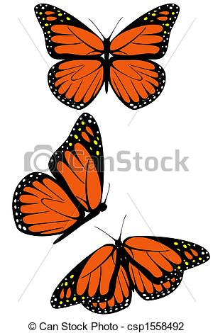 ... Monarch butterfly - A set of three monarch butterflies Monarch butterfly Clip Artby ...