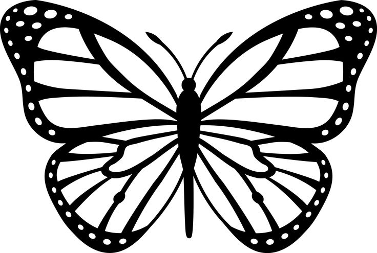 Monarch Butterfly Black Amp White 5 3 Pixels Reference u0026middot; Flower Clip Art Free .