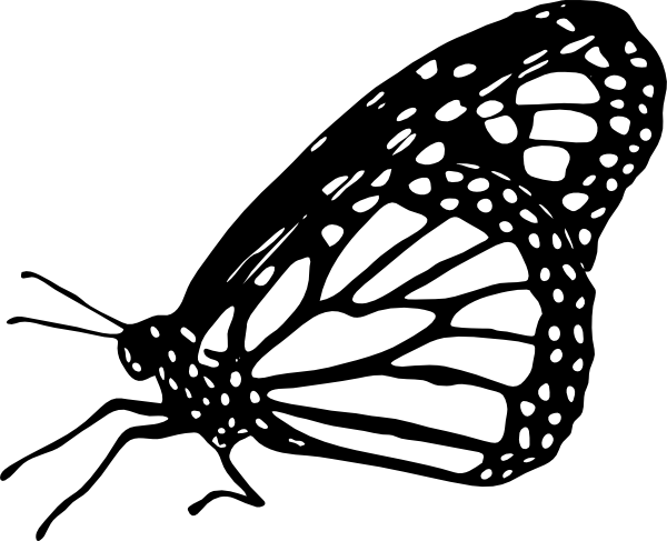 Monarch butterfly clipart black and white clipartall 3