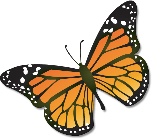 Monarch Butterfly Clipart Images